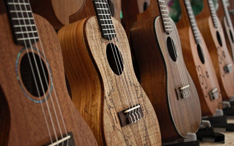 Best Ukulele Brands