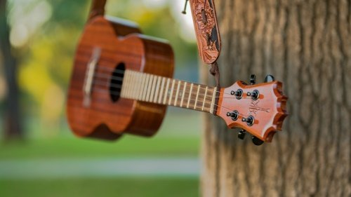 Best Ukulele Books