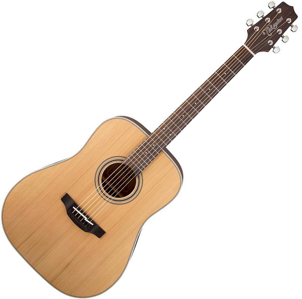 Takamine GD20-NS Guitar